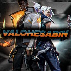 ValoHesabin