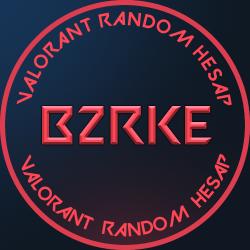 b2rke