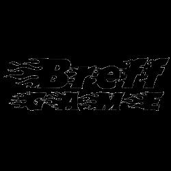 BreefGame