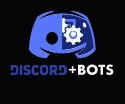 1x özel Bot 1x Özel sunucu
