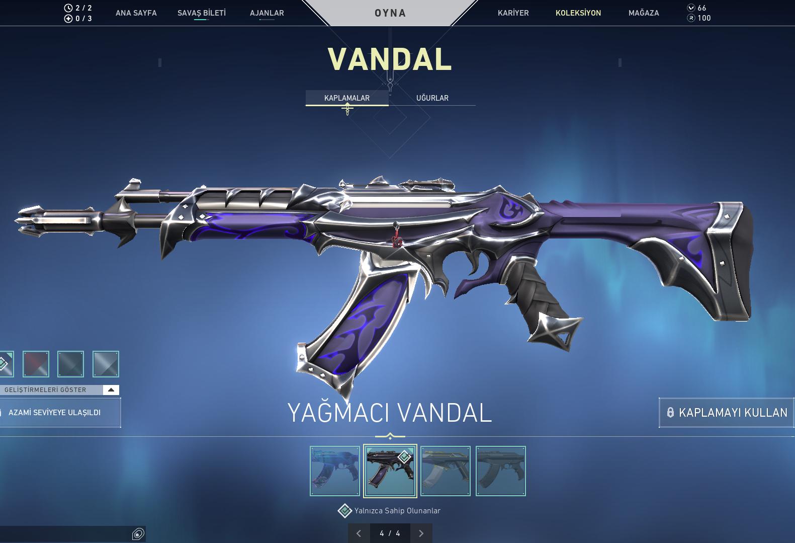 50 skin Valorant yağmacı vandal (100) Bıçak