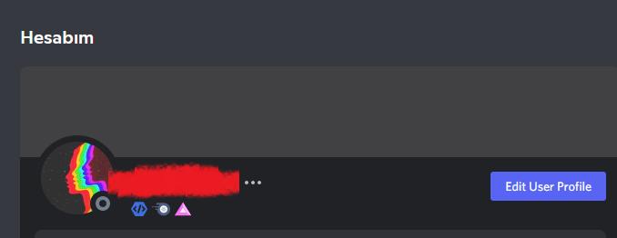 Discord Bot Developer Badge