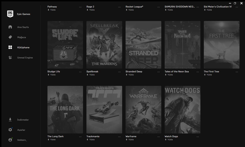 Epic Games İçi Dolu Hesap !