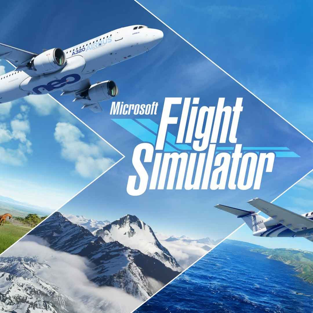 Microsoft Flight Simulator Online