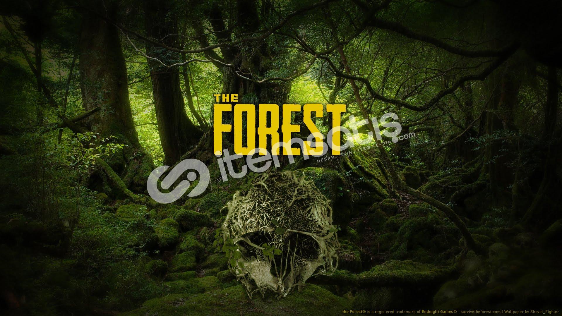 The Forest (GEFORCE NOW DESTEKLİ)