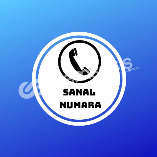SANAL NUMARA ALMA (TÜM SOSYAL MEDYA PLATFORMLARI)