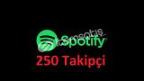Spotify 250 Takipçi