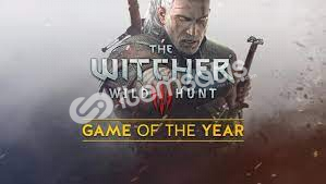 The Witcher 3 Wild Hunt: Game Of The Year Edition + Garanti!
