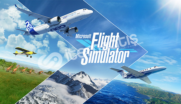 Microsoft Flight Simulator Deluxe Online!