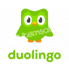 Duolingo 200x Hesap