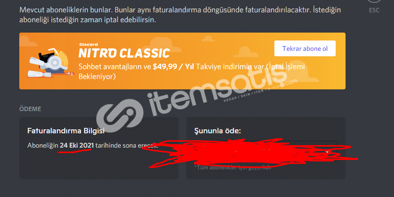 EARLY SUPPORTER BADGE + 7 AYLIK KLASİK NİTRO 0 TR KONUŞMA ++