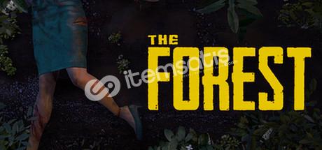LEFT 4 DEAD 2 + THE FORESTLİ HESAP 50 TL YERİNE 23 TL
