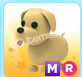 MR DOG
