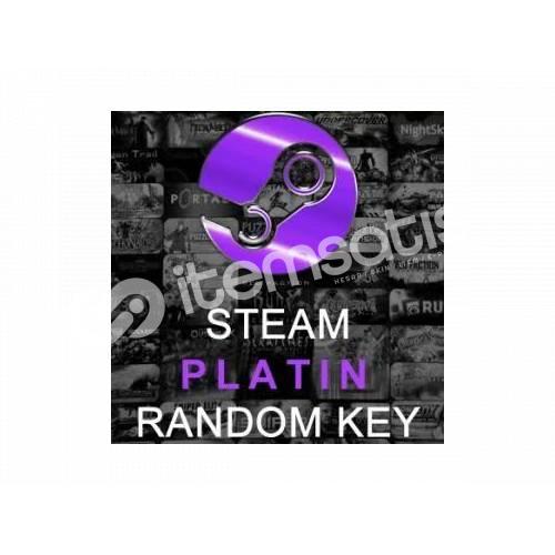 Steam PLATİN key (minimum 18TL Değerinde Oyun İçerir)