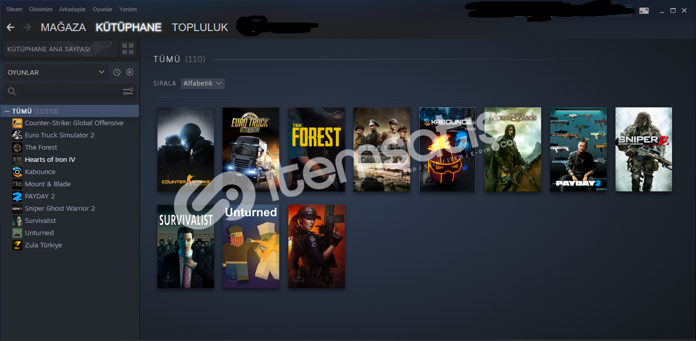 Ucuz Steam Hesabı Hoi4 DLC'li
