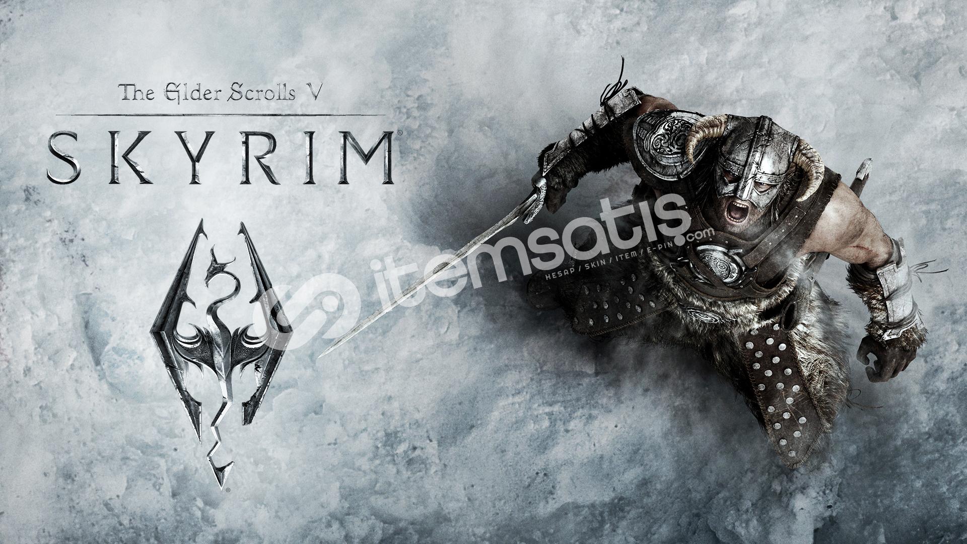 The Elder Scrolls V: Skyrim + Special Edition (5.49TL)