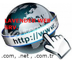 Web sitesi Sunucusu + Ücretsiz Web sitesi tasarımı