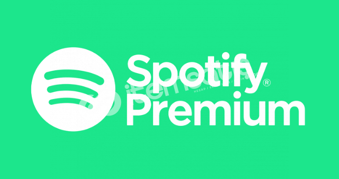 Spotify Premium 3 Aylık +Garanti