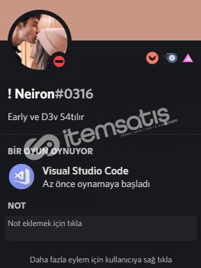Discord Developer