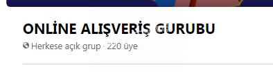 SATILIK GRUP 220 ÜYE