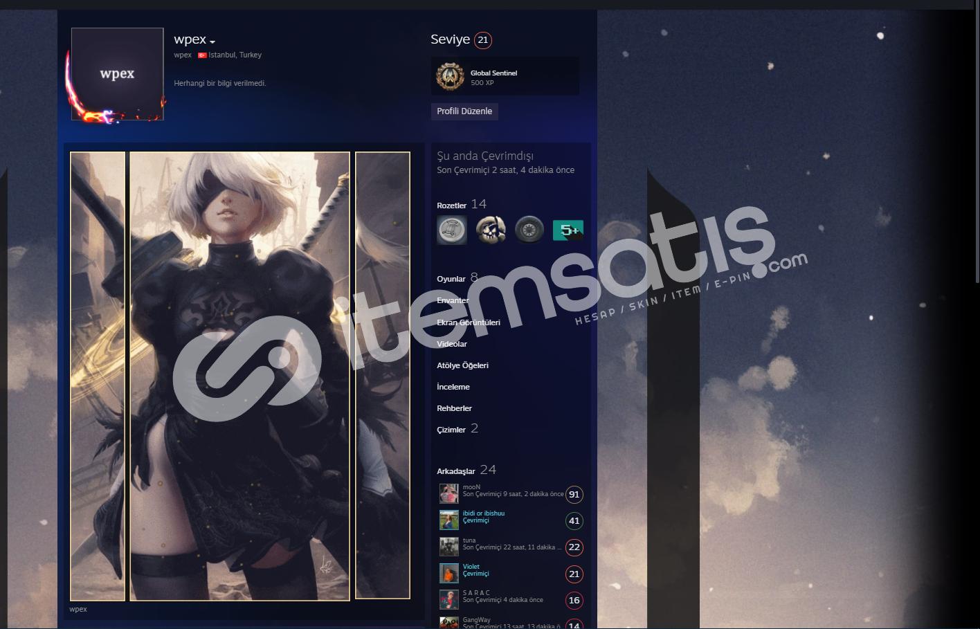 steam 21 level profil hesabı