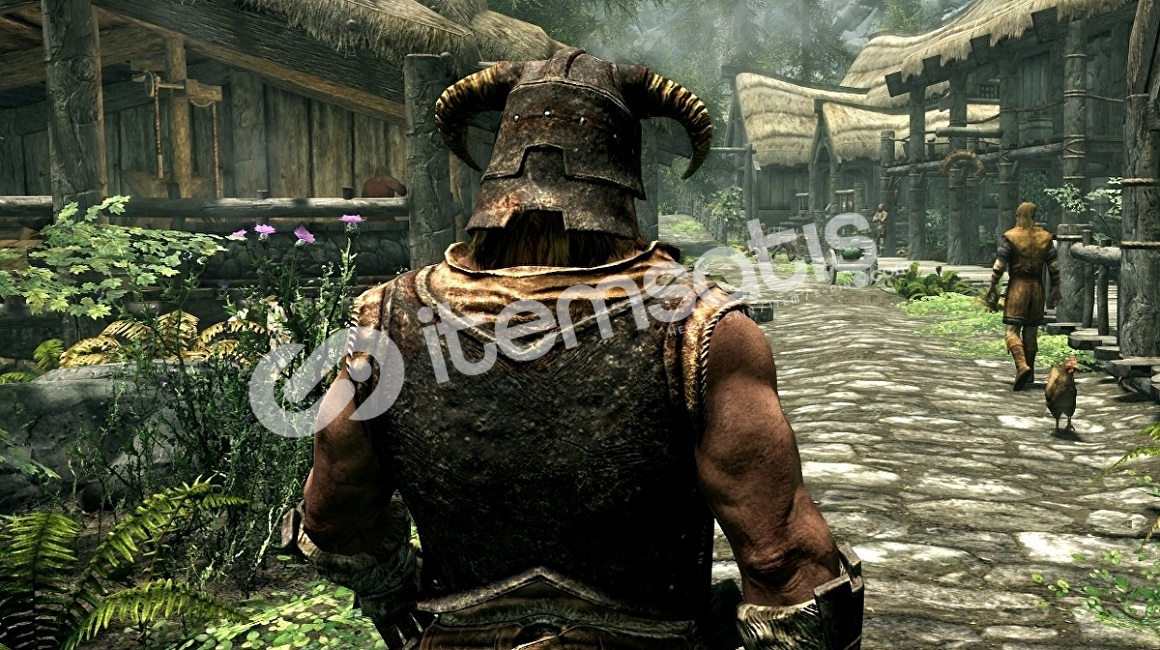 The Elder Scrolls V: Skyrim 5