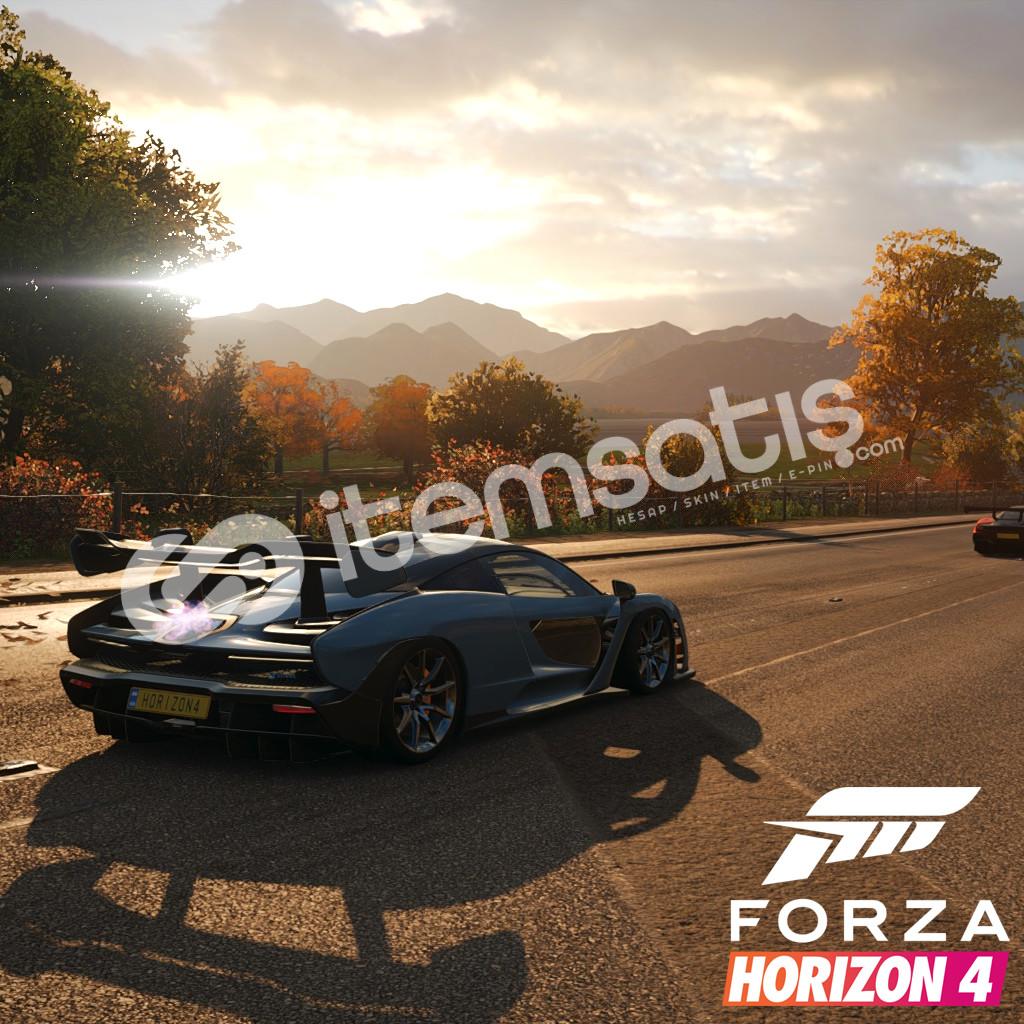 Forza Horizon 4 Ultimate bulunan Steam hesabı