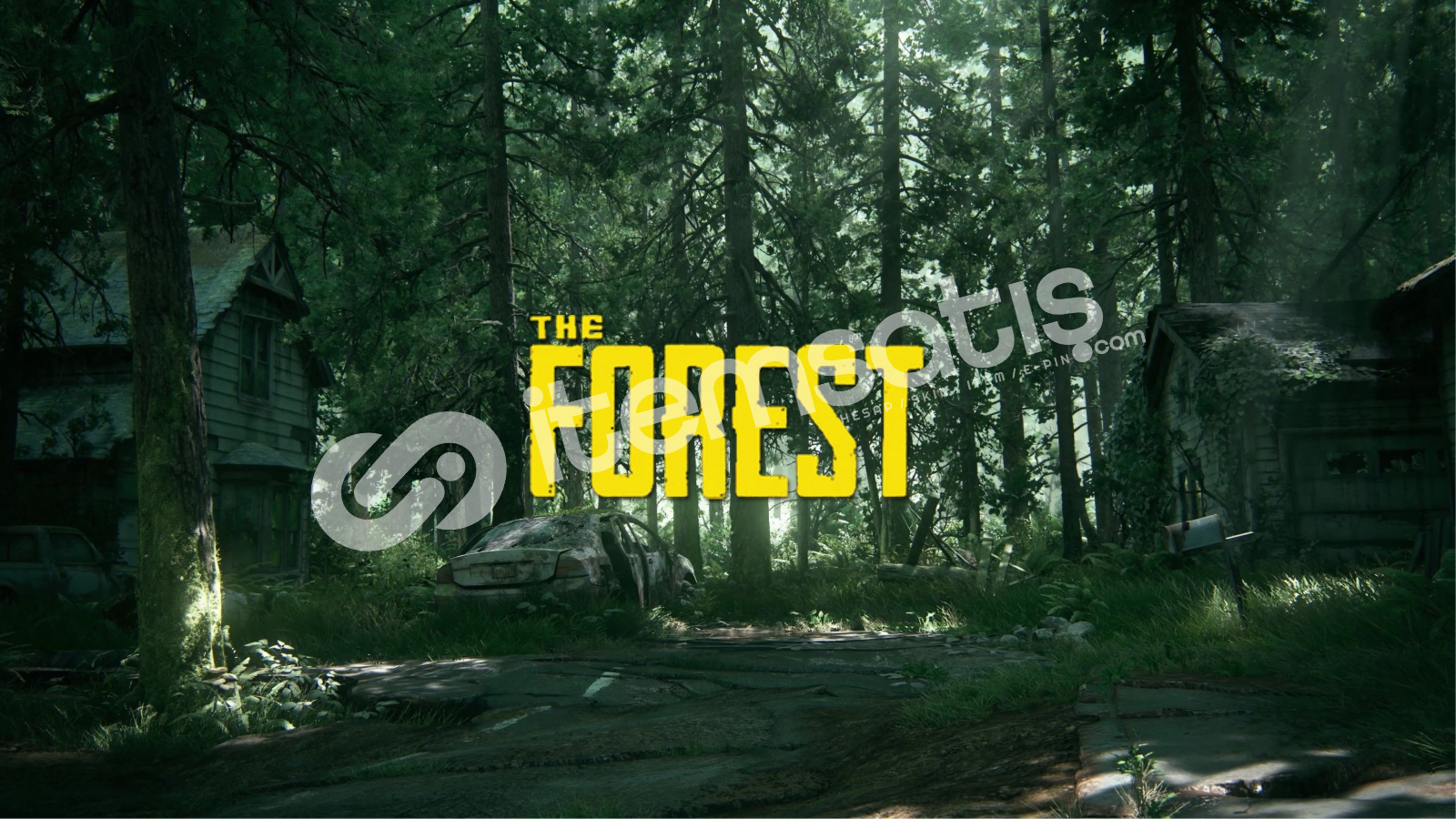 The forest + GARANTİ