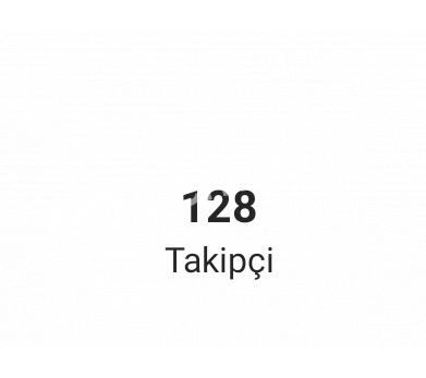 100+ Takipçi
