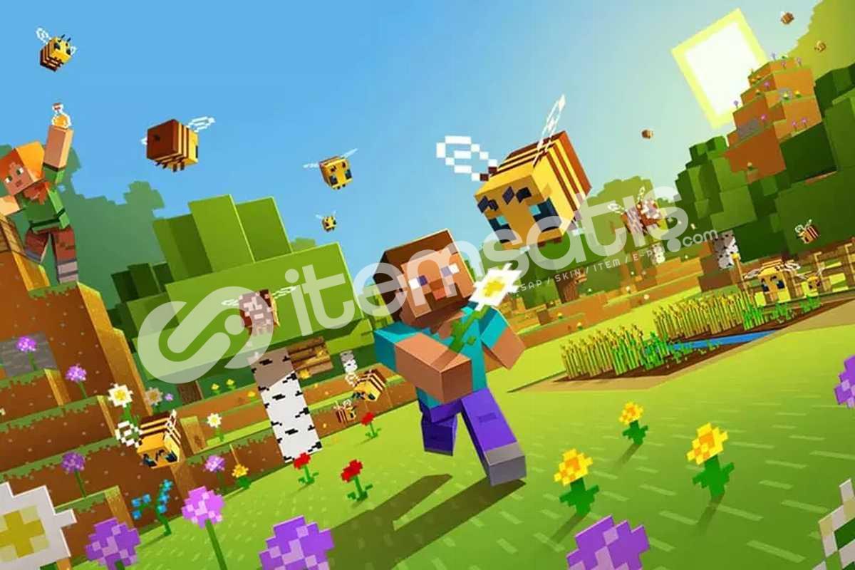 Minecraft x3 Premium Hesap