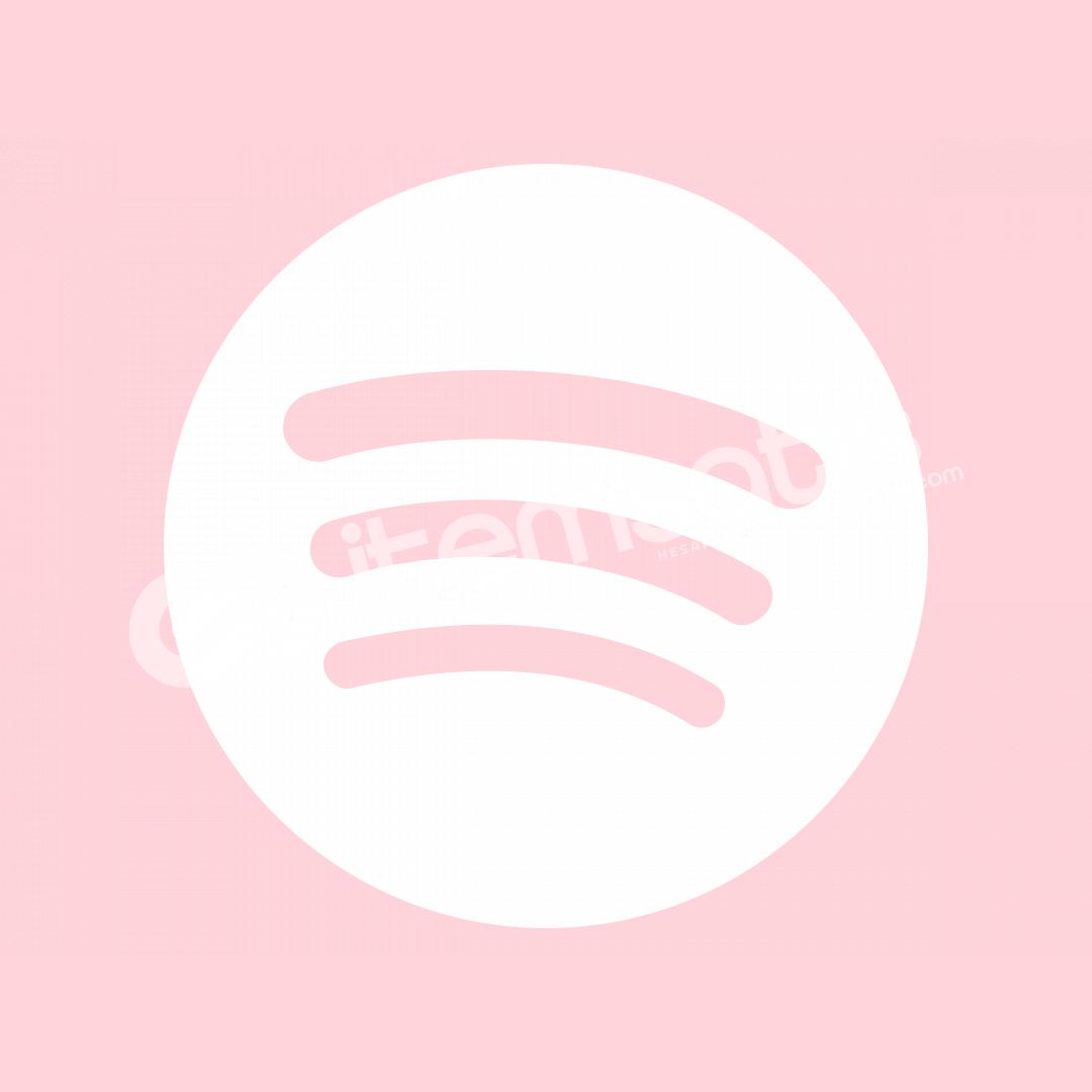 Spotify Aile Planı Yöneticisi Hesabı