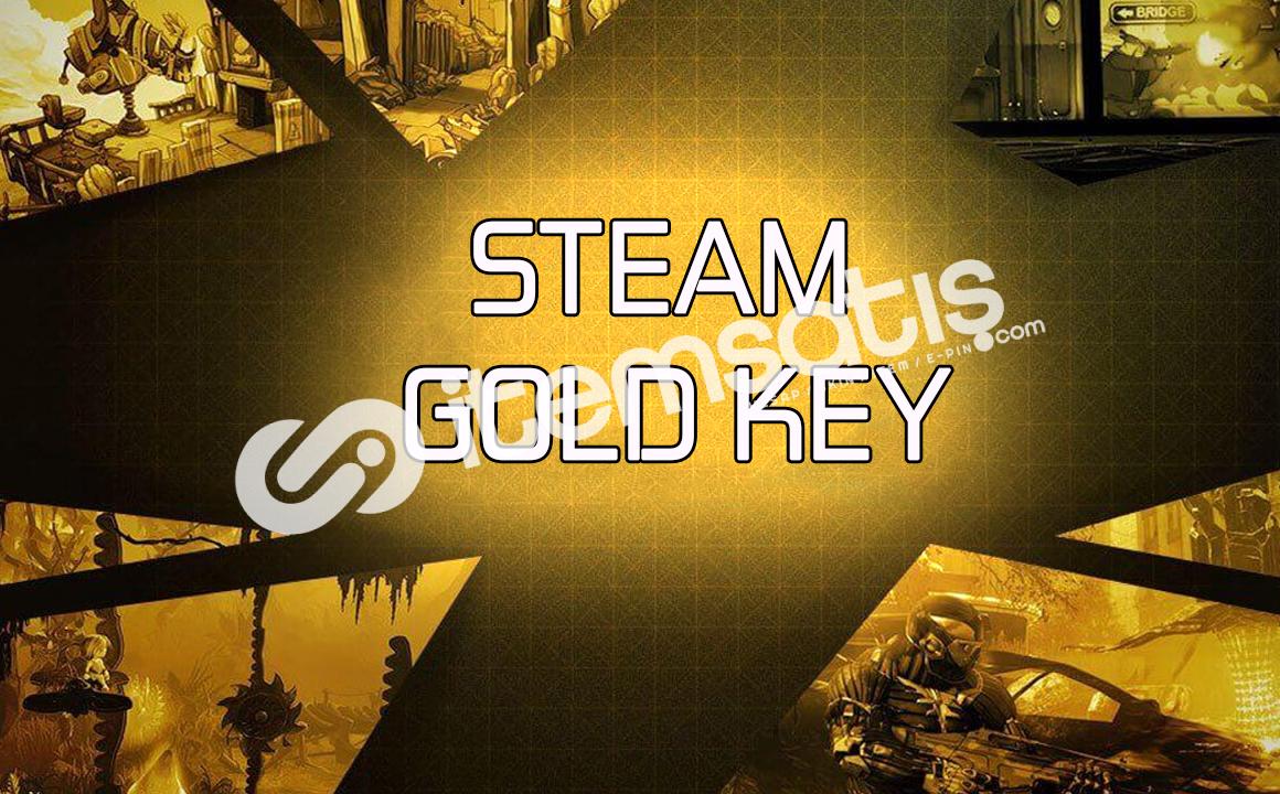Steam Gold Key + Garanti