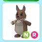 Adopt Me NR Kangaroo