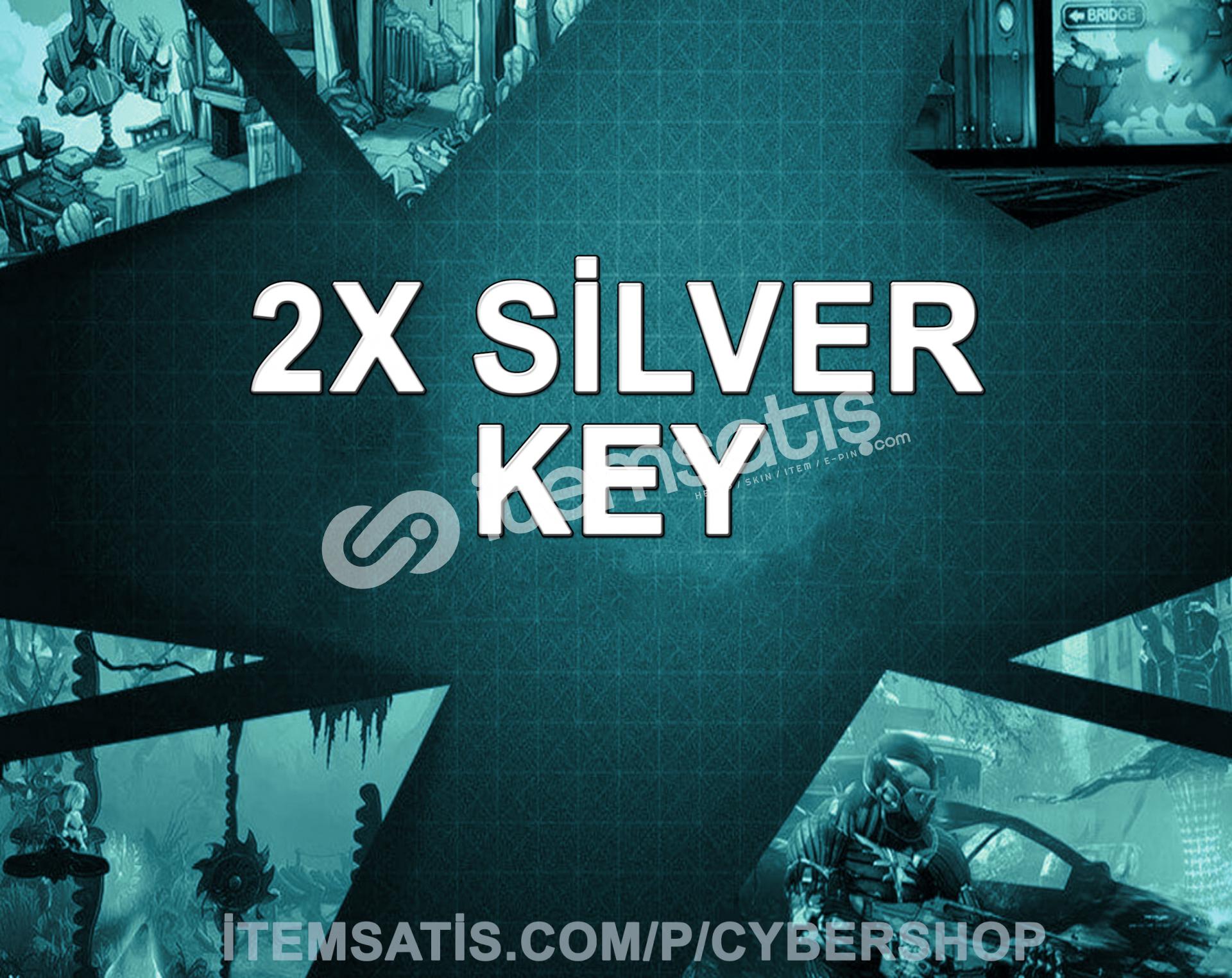 Steam (2x) Silver Key (Min: 2-200 TL)