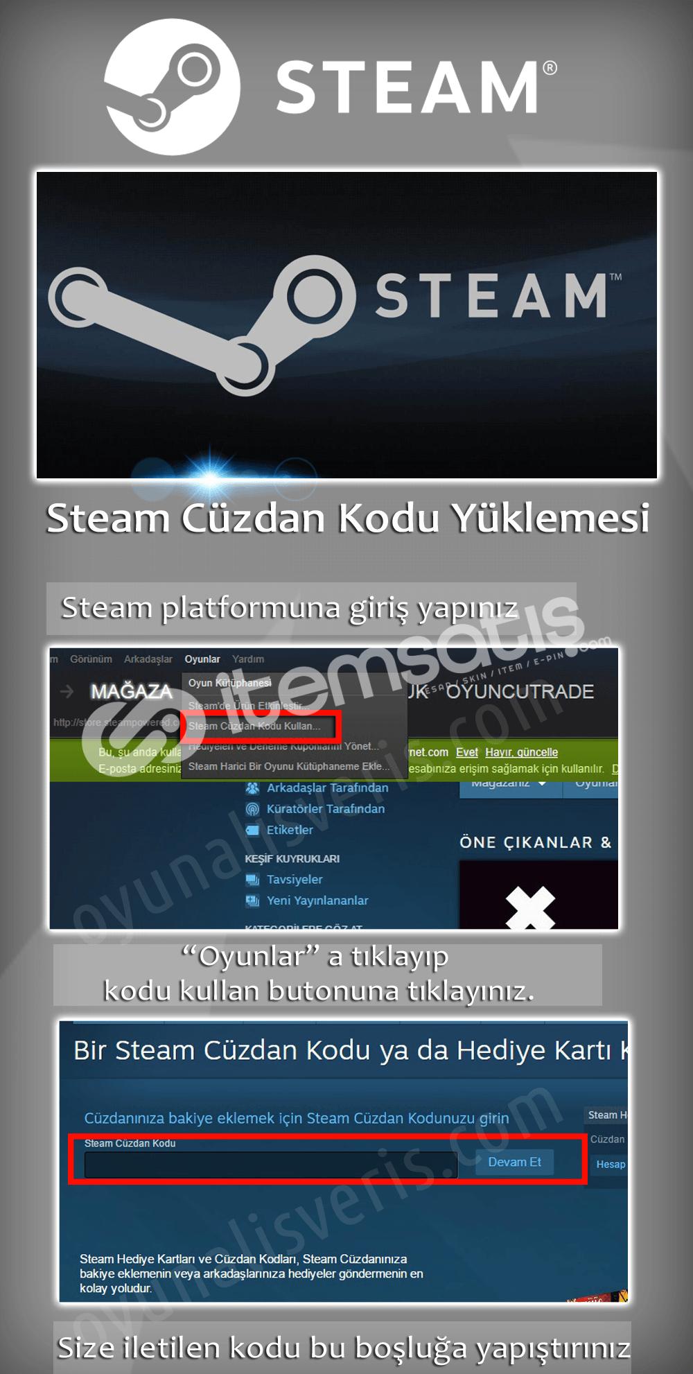 Steam 100 TL kod hemen teslim