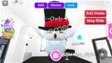 SNOW OWL!