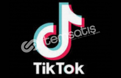 TikTok (500 Takipçi)