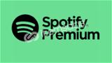 Spotify Premium 1 Aylık