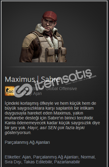 Maximus | Sabre Parçalanmış Ağ Ajanları.