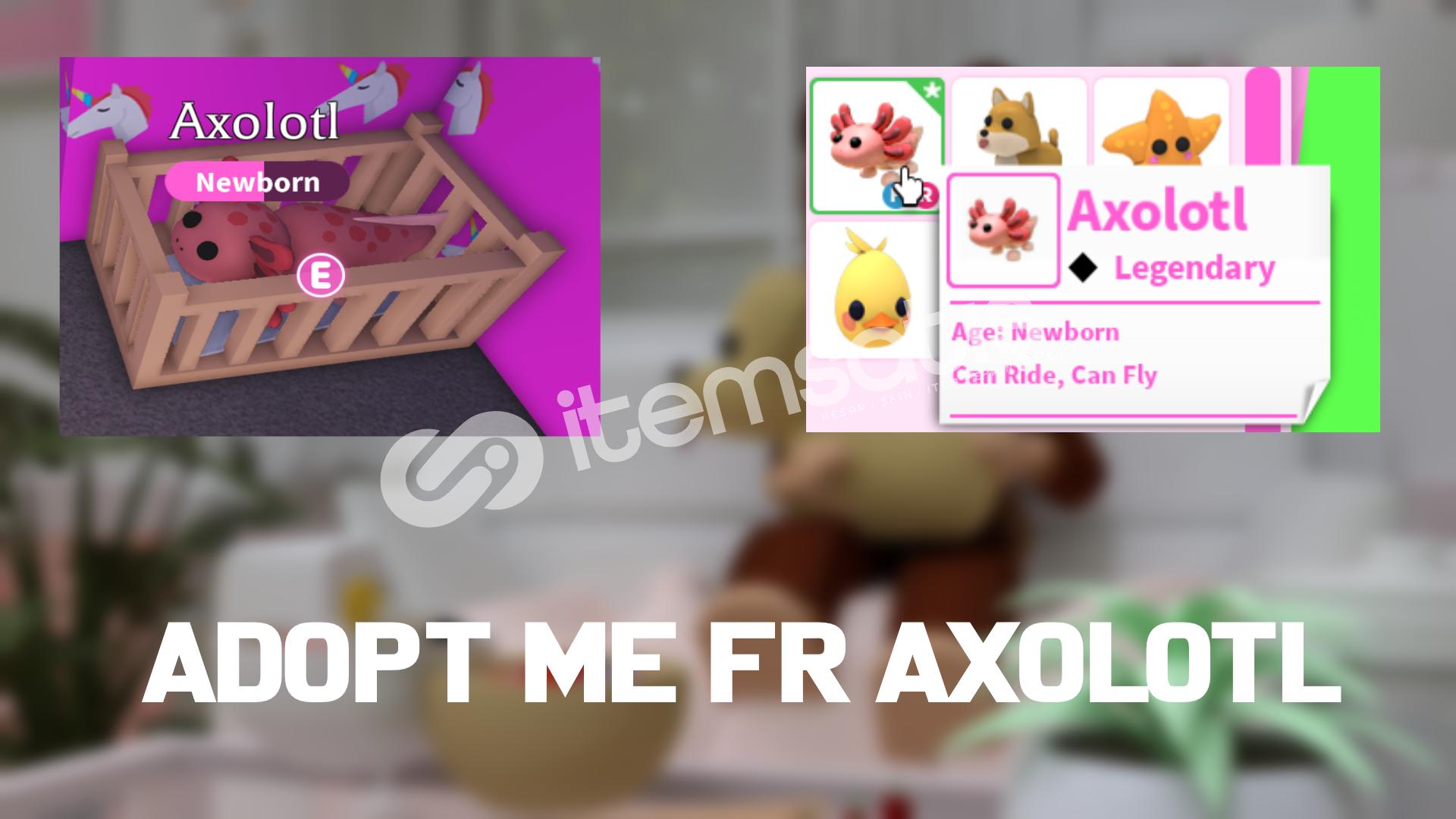 Adopt Me FR Axolotl
