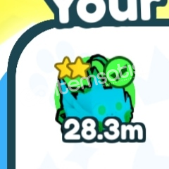 28 M pet
