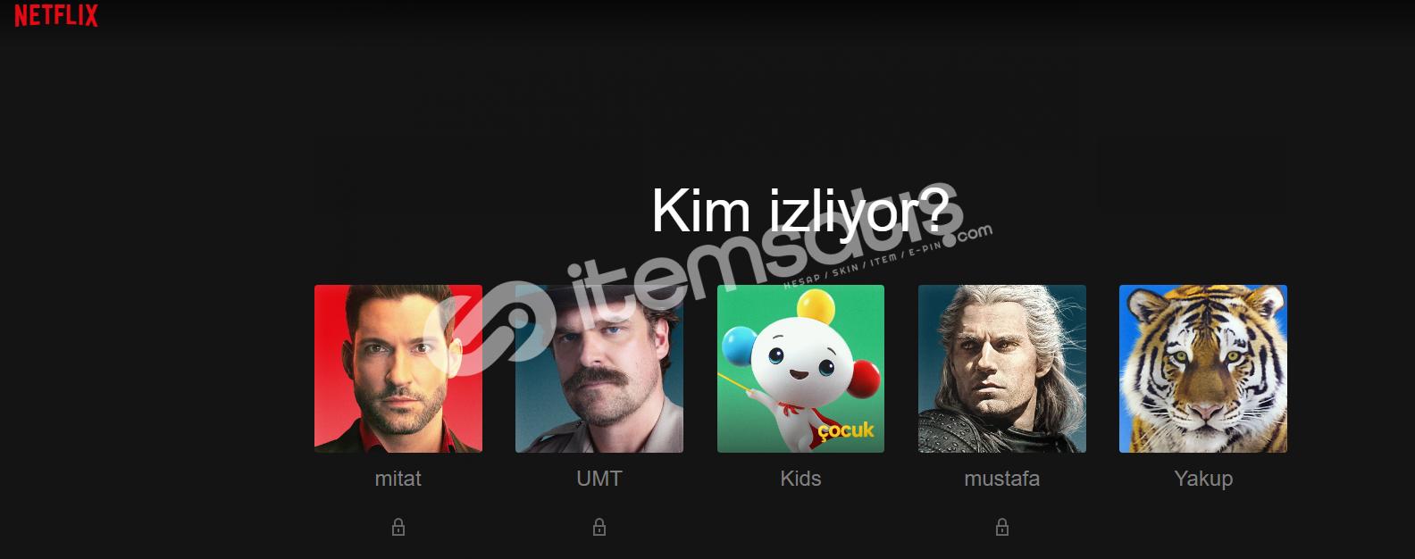 Netflix 4K UHD 1 Kişilik Hesap Sınırsız