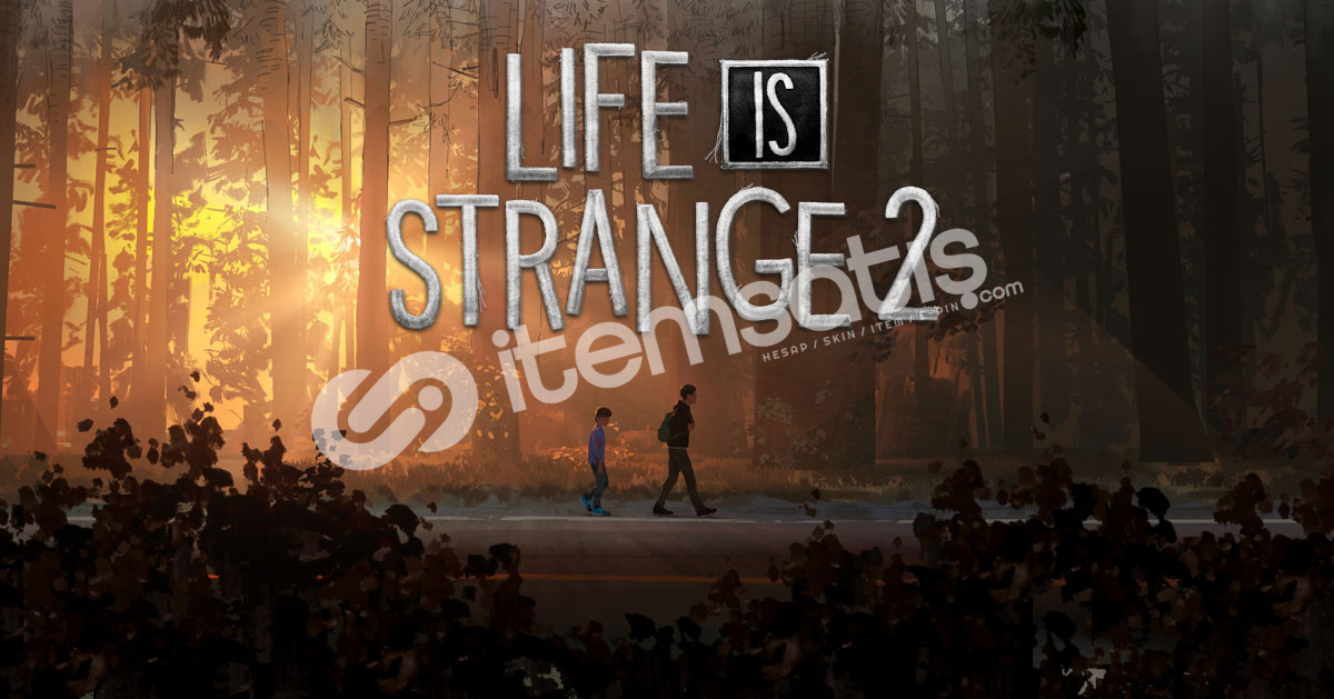 Life Is Strange 2 Complete Edition - Steam