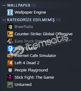 Steam 4 level hesap içinde 8 oyun 133 tl var