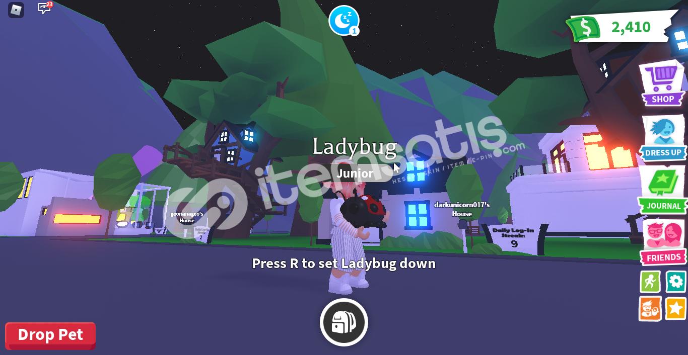 ladybug!!!