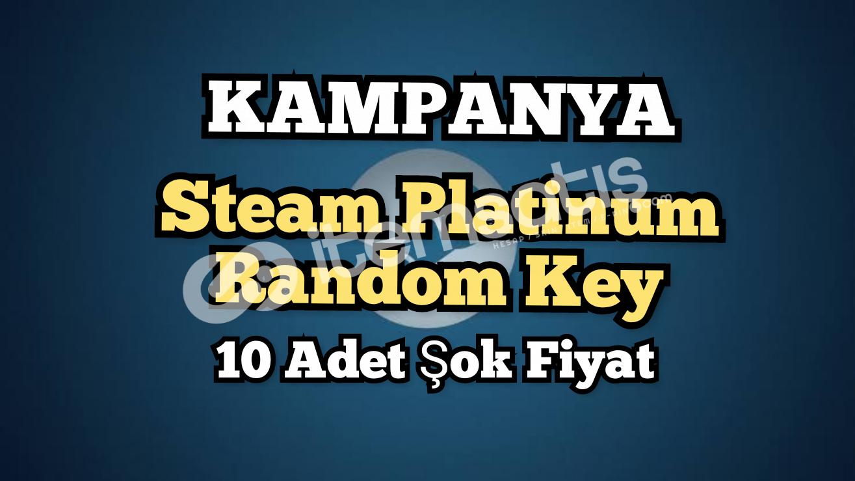 10 Adet Steam Platinum Random Key