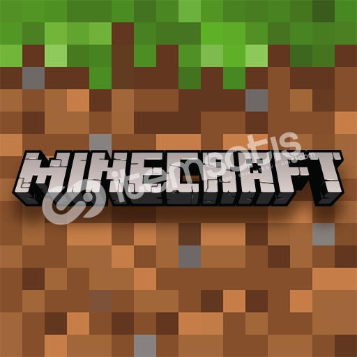 Minecraft | 5 adet random premium