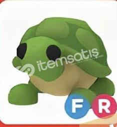 FR turtle 1 adet var