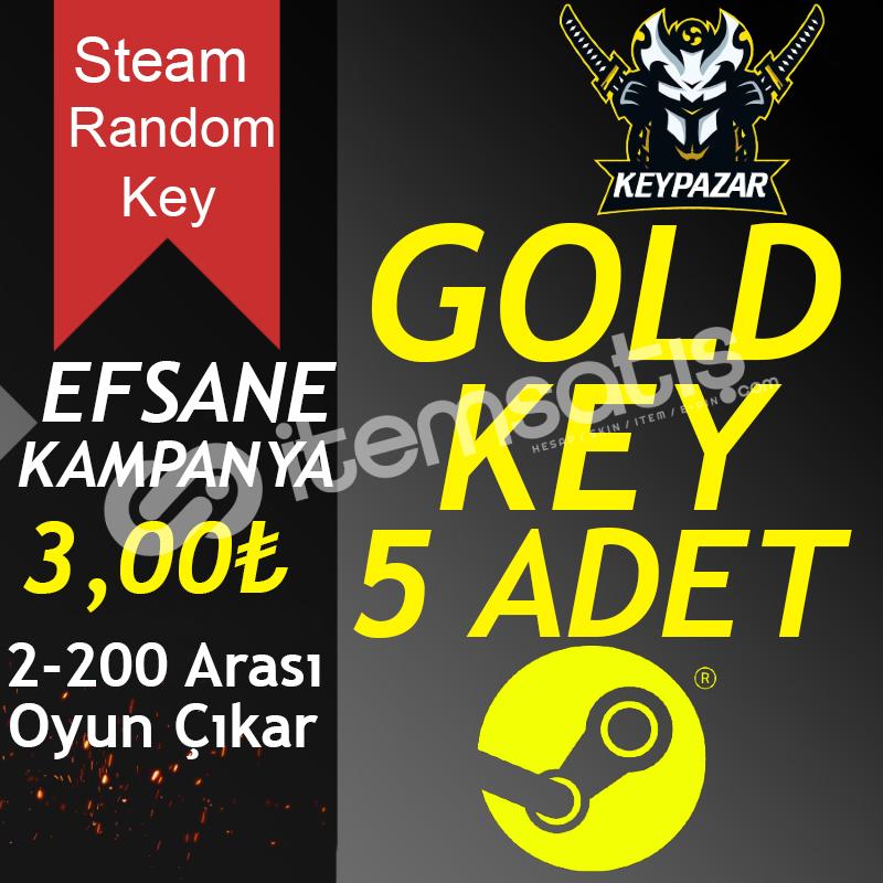 Steam Random Key GOLD 5 ADET 2-200TL Oyun