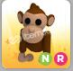 Neon Monkey (Ride)